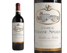 CHÂTEAU CHASSE-SPLEEN 1990 rouge